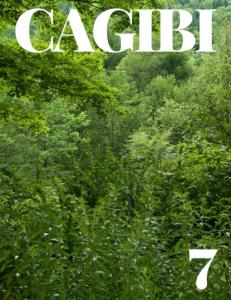Cagibi